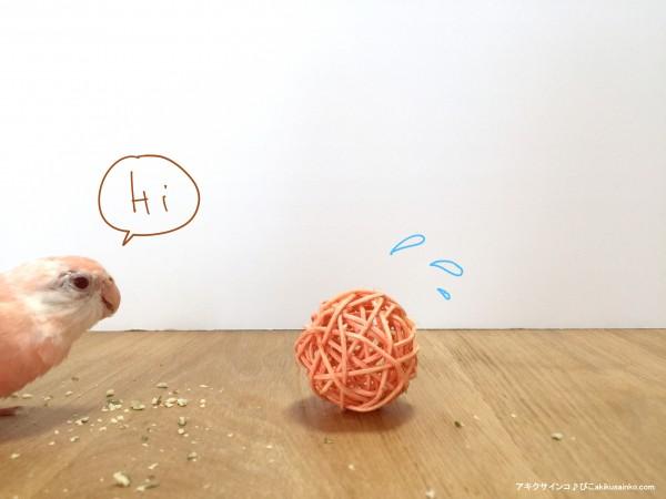 ぴことボール