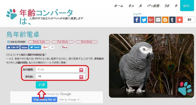 birdage